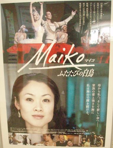 Maikoふたたびの白鳥.JPG