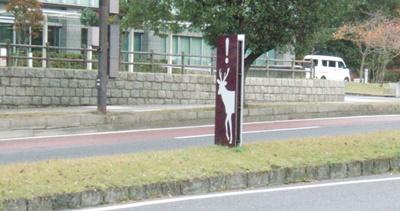 Nara1.JPG