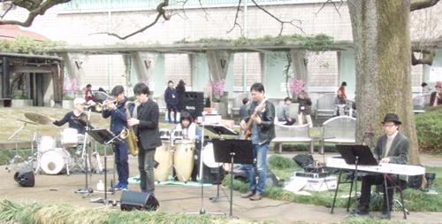 SetagayaMusiumSakuraMatsuri2.JPG