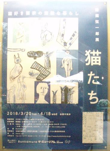 InokumaCats3.JPG
